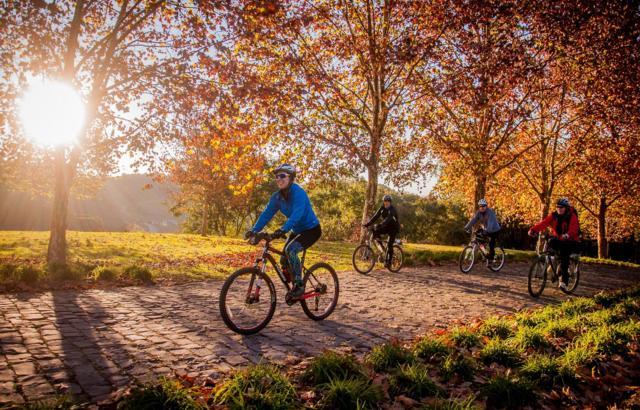Outono é perfeito para pedalar