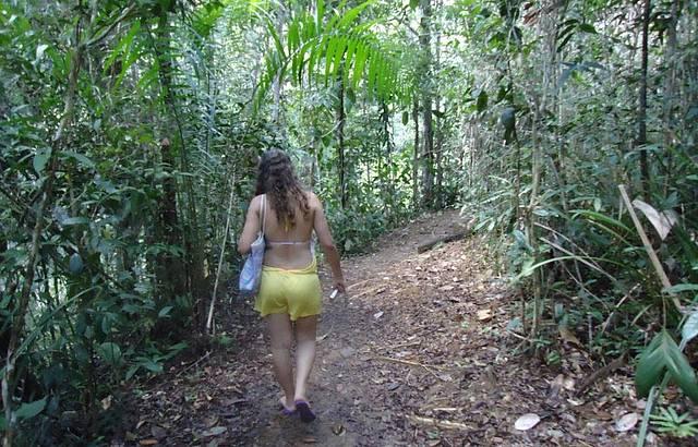 Caminhando Pela Trilha,sentindo o Frescor da Naturesa.