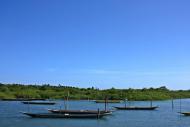 Passeios de barco partem da praia e levam aos manguezais
