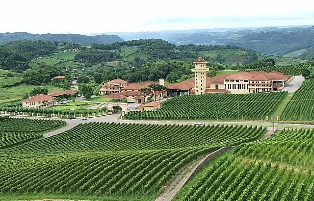 Vale dos vinhedos -Vinicola Miolo