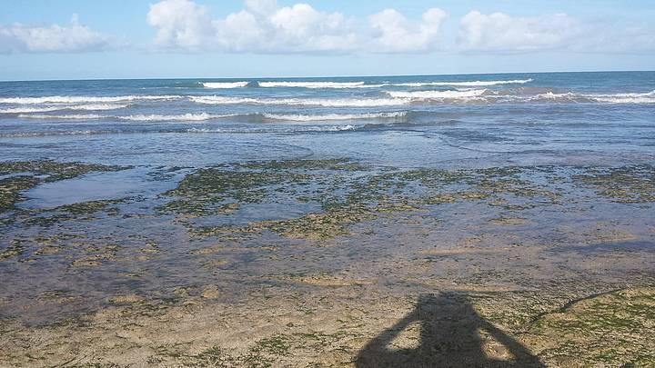 Arrecifes no pina.