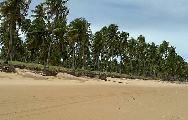 Areias desertas
