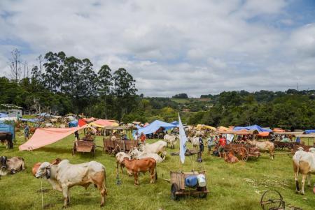 Zona rural reúne tradição e belas paisagens