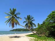 Paraíso baiano