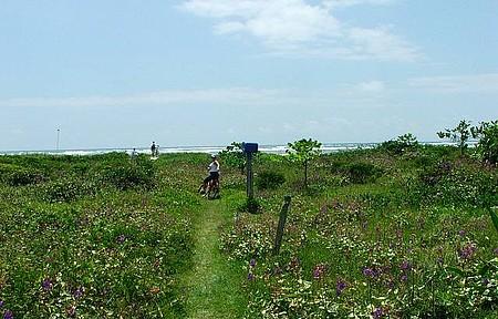 Ilha de Surperagui - Chegando a praia deserta pela trilha