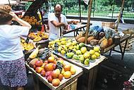 Frutas fresquinhas da feira para as casas de sucos