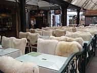 Bares e Restaurantes com pelego nas cadeiras