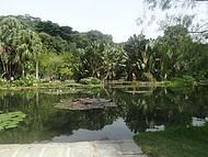 Lago Victória Regia