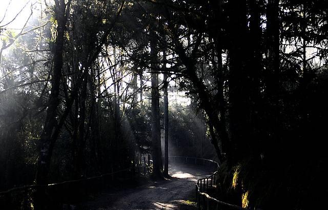 Nevoeiro matinal 03�C  Aug.2009