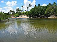 Pontal de Maracaipe - Cavalos Marinhos