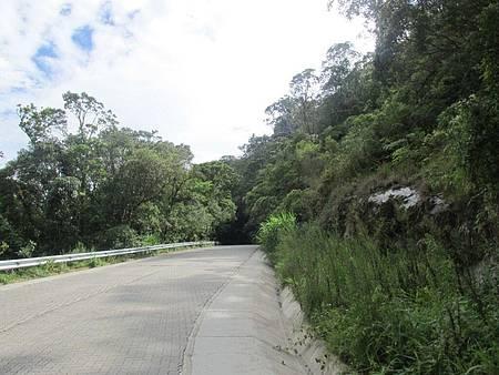 Estrada Paraty-Cunha novinha em folha - Nova pavimentação e trecho dentro do Parque da Serra da Bocaina