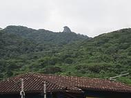 pico do papagaio visto da vila do Abraão