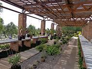 Jd Botânico Orquidário
