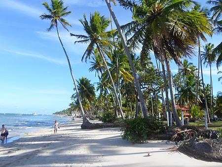 Vista da bela Praia de Carneiros, com vista de fundo da Capela São Benedito