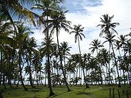 Praia de Tassaimirim