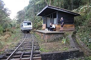 Passeio de trem até Santo Antônio do Pinhal