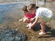 Brincando com os Peixinhos nas Piscinas Naturais