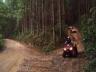 Passeios de quadriciclo exploram as trilhas
