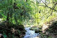Natureza preservada nas trilhas pela Fazenda Serra do Japi